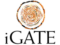 iGate removes Patni from brand identity - Firstpost