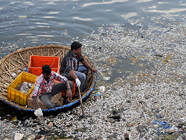 Ulsoor Lake in Bengaluru. Image from Reuters
