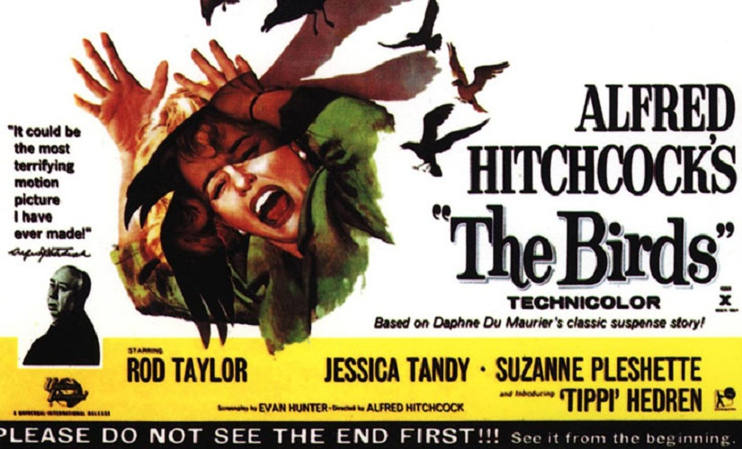 Poster of Alfred Hitchcock's 'The BIrds'