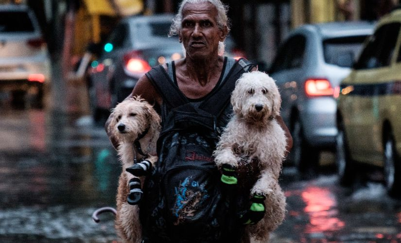 A man carries dogs while wading through a flooded street. AFP