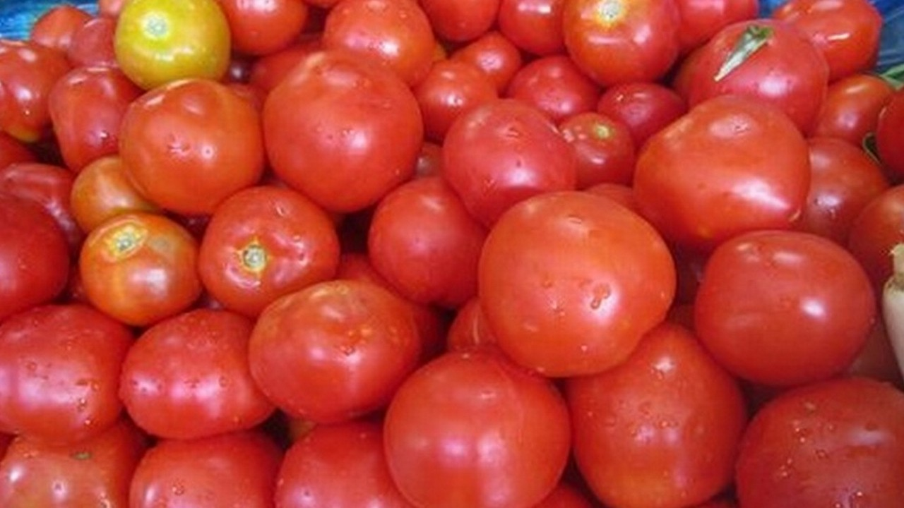 Tomato prices skyrocket, hit Rs 80 per kg in national capital region, Rs 100 in Mizoram on supply crunch