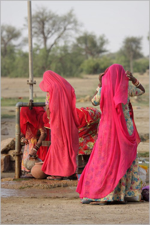 Women on the streets of Jaisalmer, Rajasthan collecting water. Image credit: Flickr/nevil zaveri