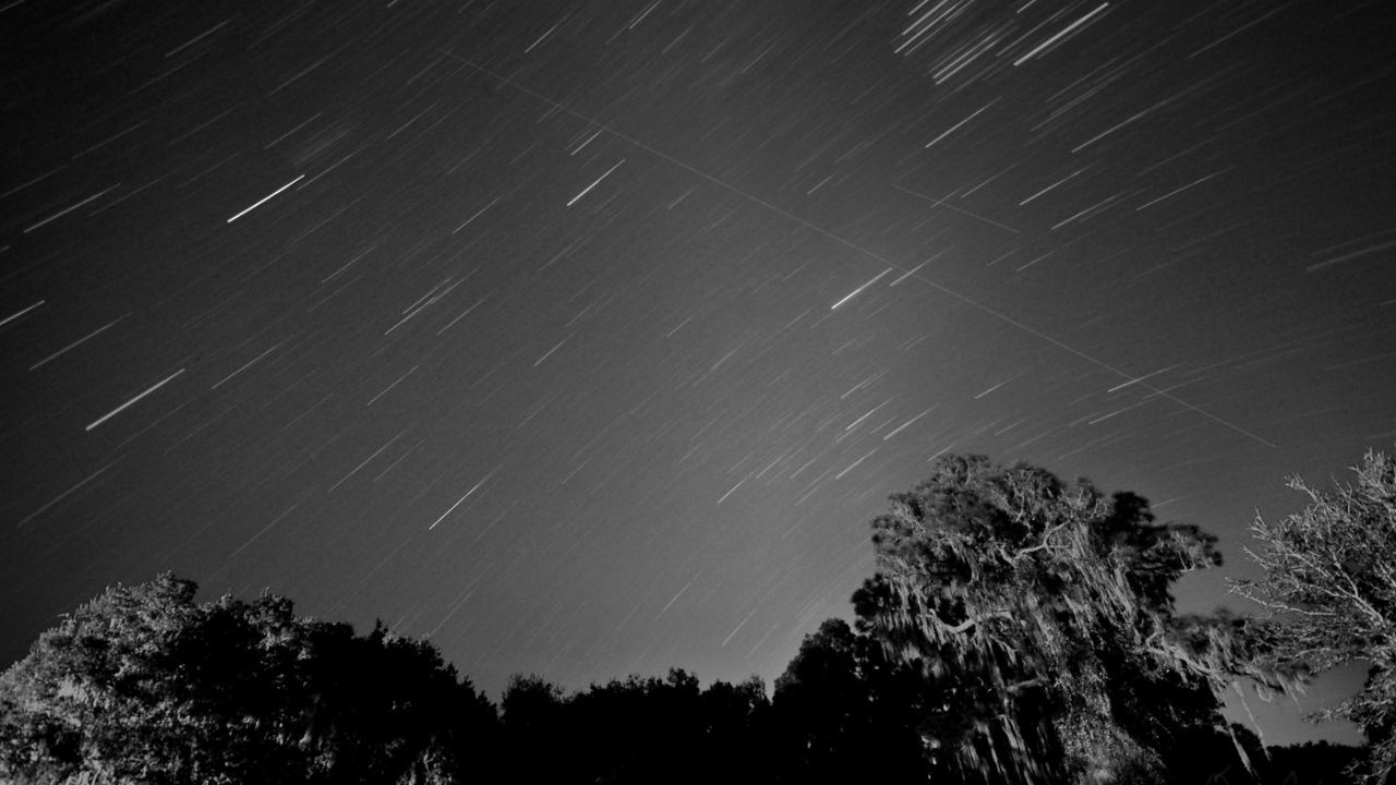 The Leonids meteor shower, Image credit: Flickr/Drew Wilson