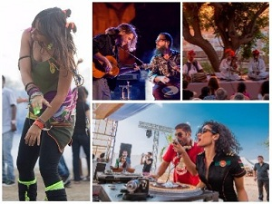 NH7 Weekender, Jodhpur RIFF, Ziro: All you need to know about the 2017 music festival season